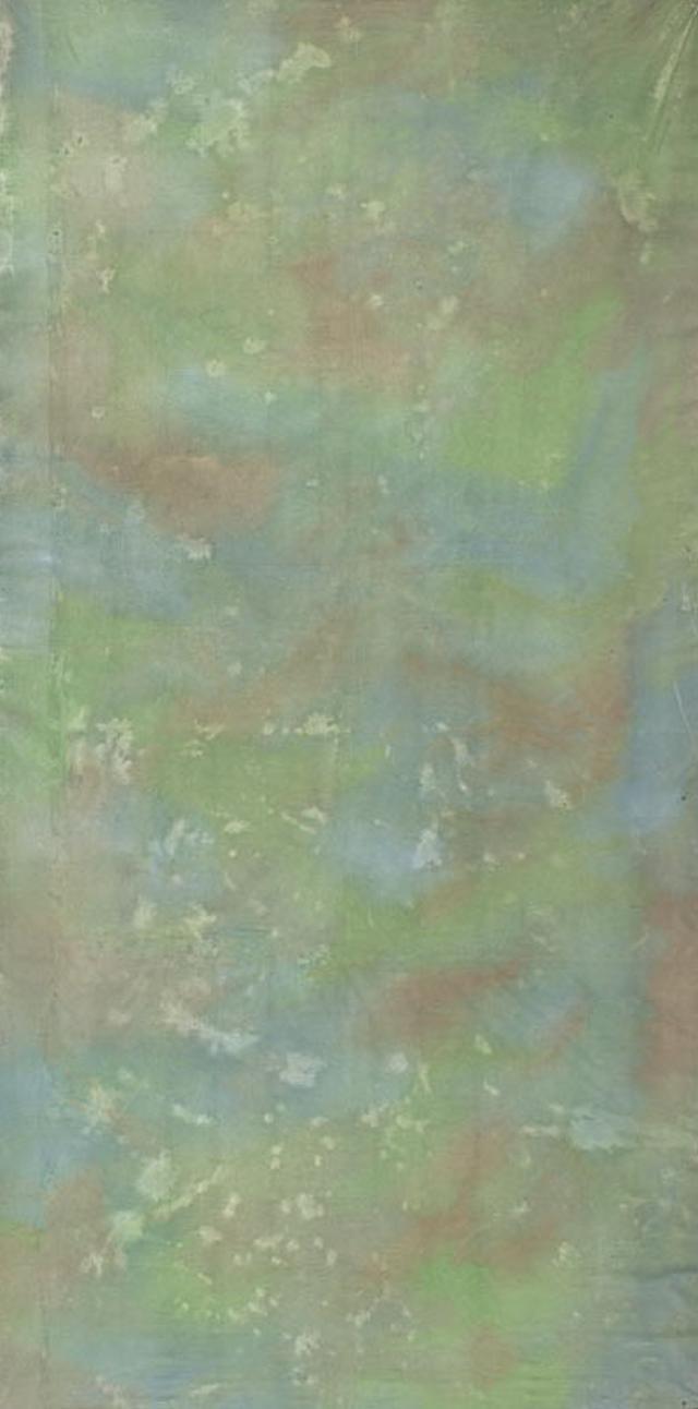 Backdrop 372 Green Blue 6'X12'
