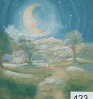 Backdrop 423 Cartoon Night Forest With Moon 10'X10'