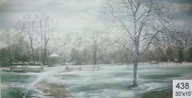 Backdrop 438 Winter Park With Bandstand 30'X15'