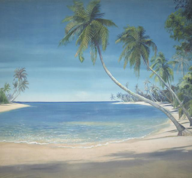 Backdrop 457 Tropical Beach &Amp; Palm Trees  457A 16'X12'