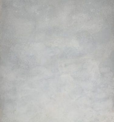 Backdrop 461 Light Grey 6'X12'