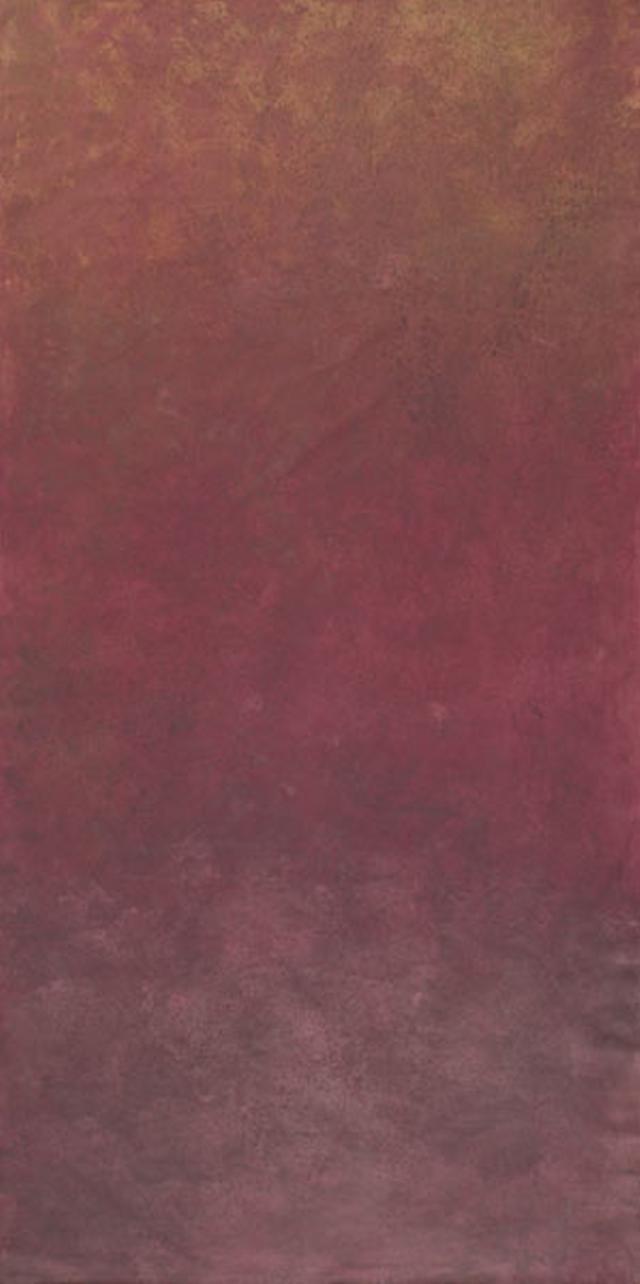 Backdrop 466 Dark Red Maroon 6'X12'