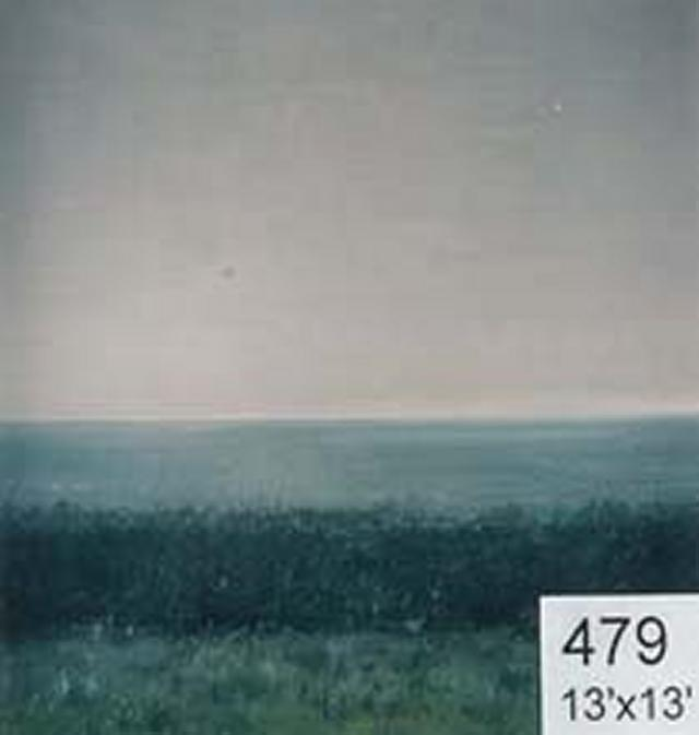 Backdrop 479 Country View To Sea 13'X13'