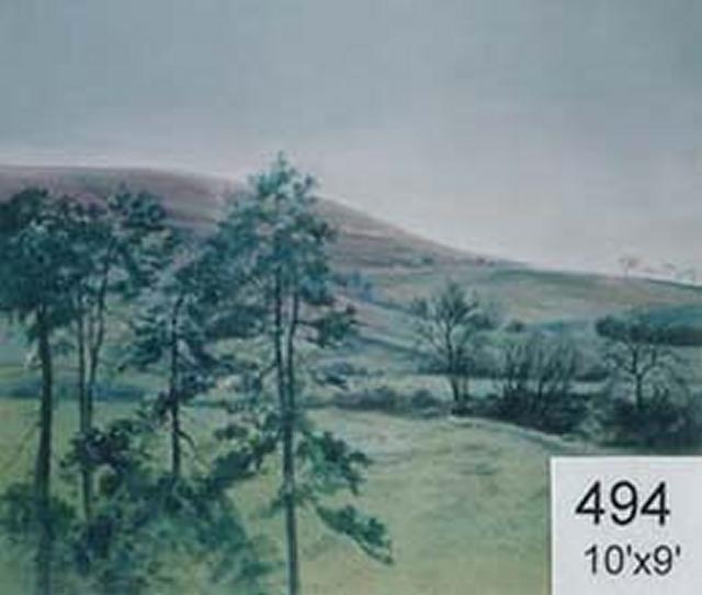Backdrop 494 Rural Landscape 10'X9'
