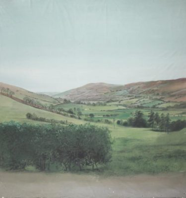 Backdrop 495 Rural Hills 8'X9'