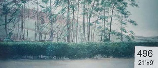 Backdrop 496 Rural Wooded Landscape 21'X9'