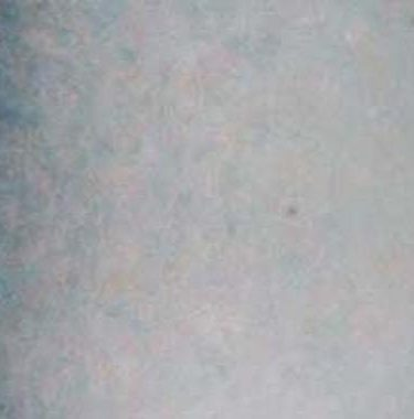 Backdrop 498 Mid Grey Beige Pink 20'X11'