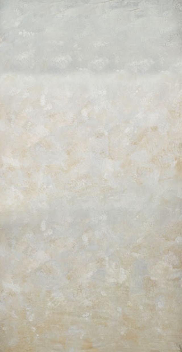 Backdrop 503~0 Mid Light Grey Beige 6'X12'