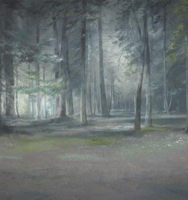 Backdrop 516 Woodland Path 15'X15'