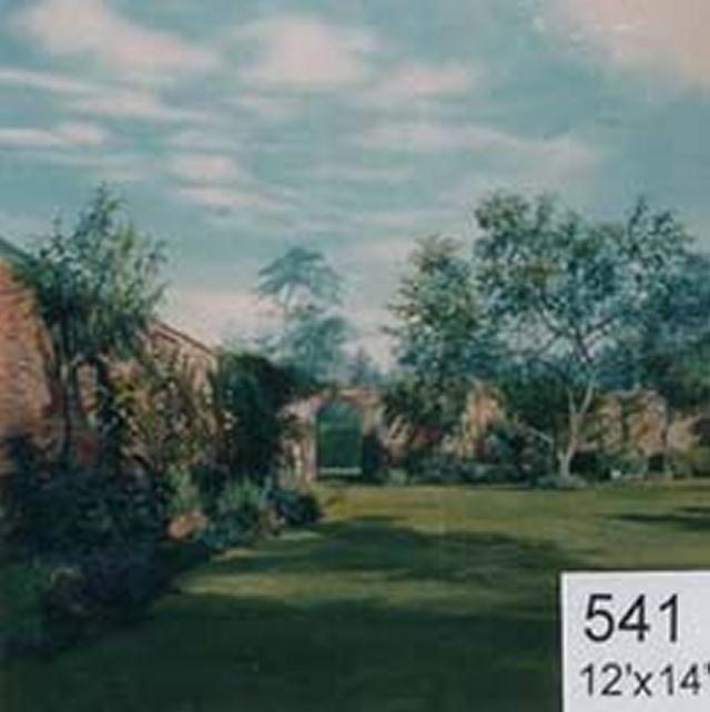 Backdrop 541 Summer Garden 12'X14'