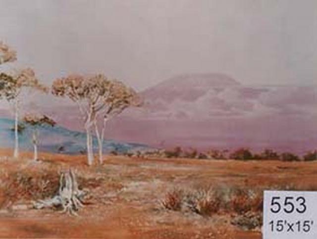 Backdrop 553 African Landscape Kilimanjaro 15'X15'