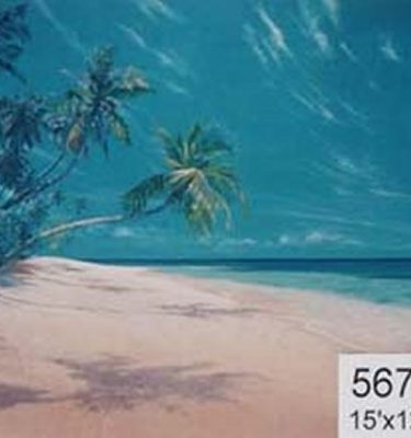 Backdrop 567 Tropical Beach &Amp; Palm Trees 15'X12'