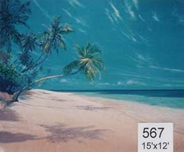 Backdrop 567 Tropical Beach &Amp; Palm Trees 15'X12'