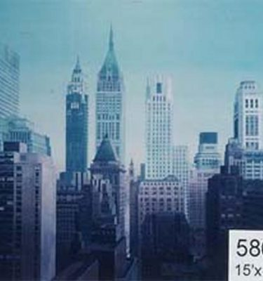 Backdrop 586 City Skyscraper Skyline 15'X15'