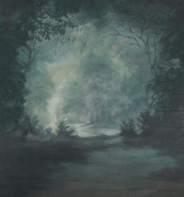 Backdrop 588 588 Misty Woodland Scene With Lake 12'X18'