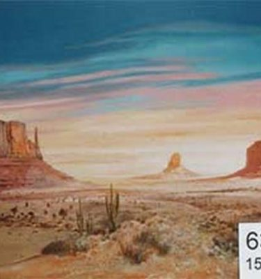 Backdrop 635 Arizona Desert 15'X15'