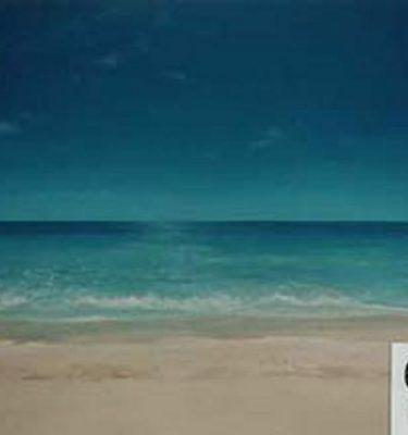 Backdrop 639 Sand, Sea & Sky 12'X9'