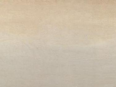 Backdrop 650 Floor Cloth Sand, Matches 567, 457 15'X6'