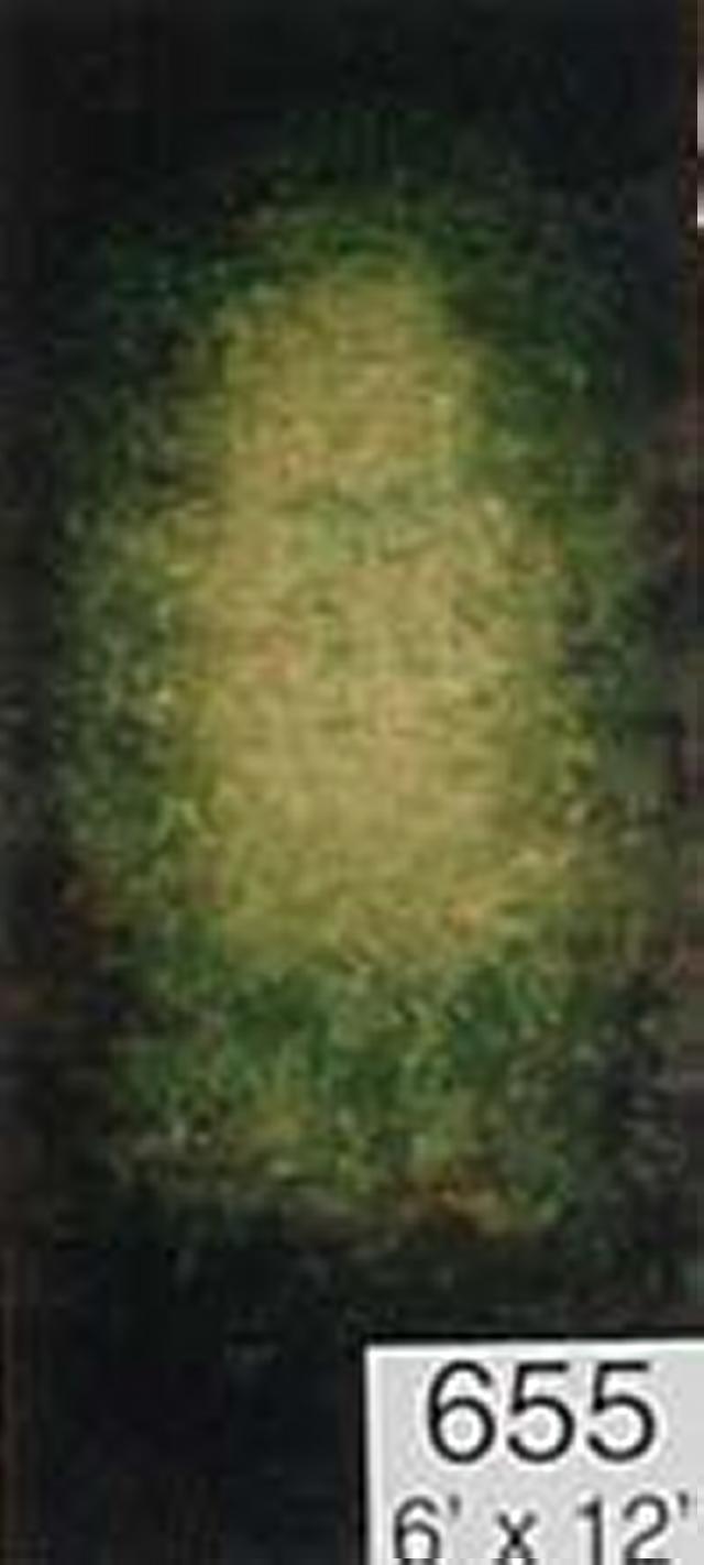 Backdrop 655 Green Grey Brown Yellow 6'X12'