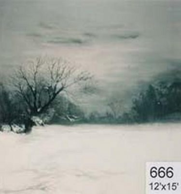 Backdrop 666 Snow Landscape 12'X15'