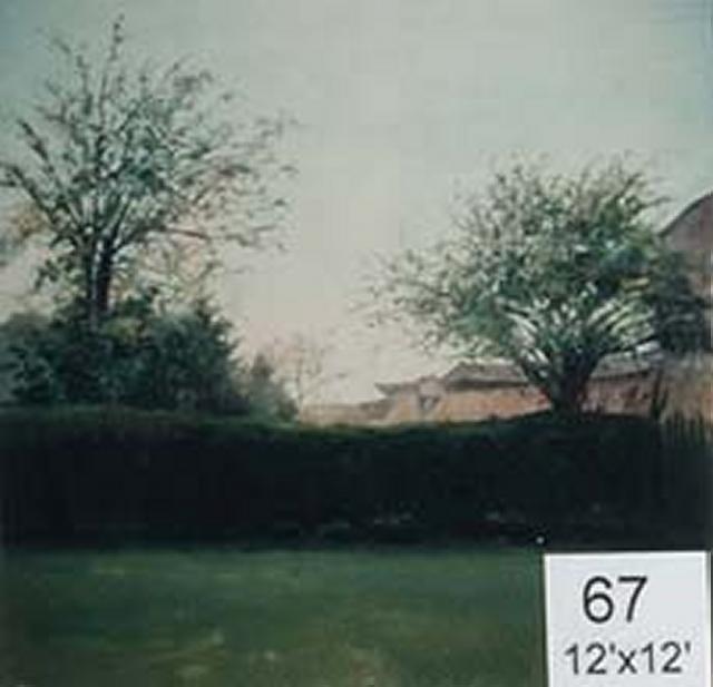 Backdrop 67 Rural Garden Hedge Barns 12'X12'