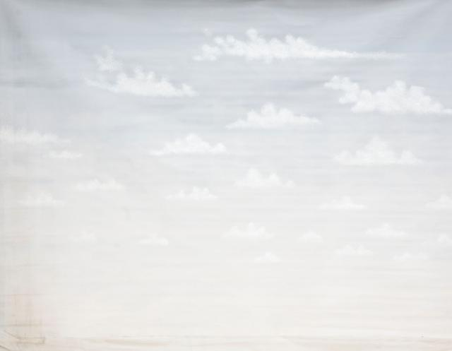 Backdrop 729 White Clouds On Grey Sky 11'X8'