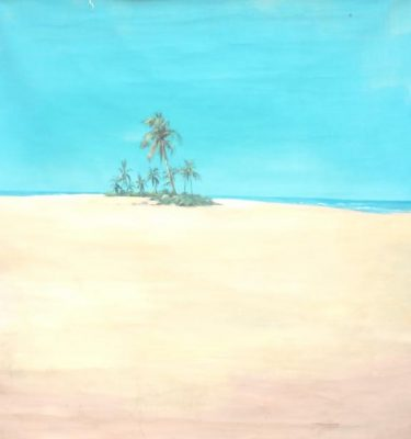 Backdrop 737 Desert Island 8'X8'
