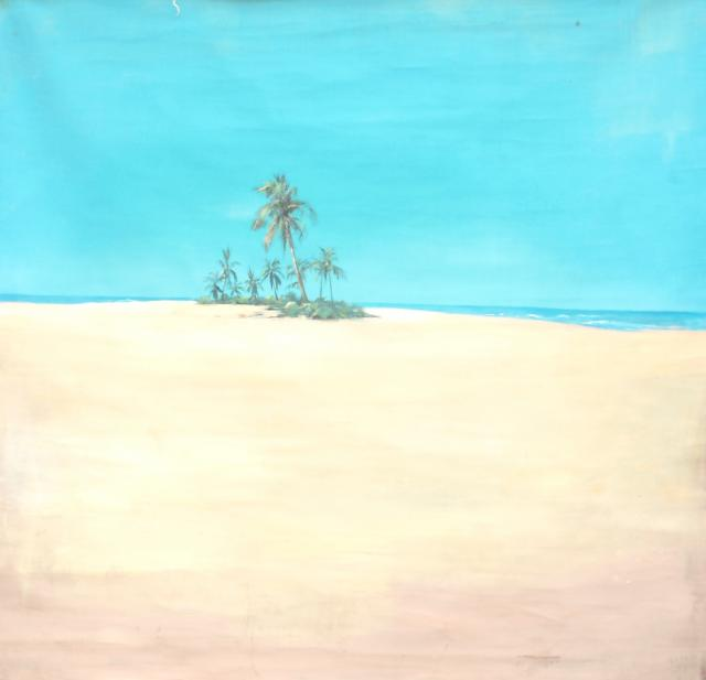 Backdrop 737 Desert Island 8'X8'