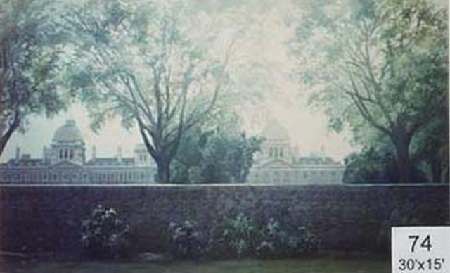 Backdrop 74 Garden View From Downing Street 30'X15'
