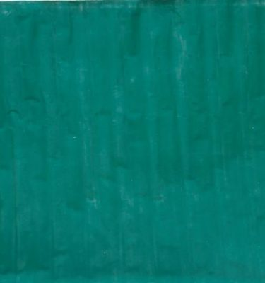Backdrop 746 Green Backing 8'X7'