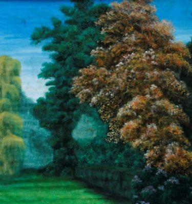 Backdrop 747 Garden &Quot;Frogard&Quot; Style 9'X8'