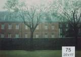 Backdrop 75 Garden Terrace View 20'X15'