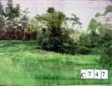 Backdrop C747 12' X10'