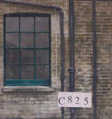 Backdrop C825 8' X8'