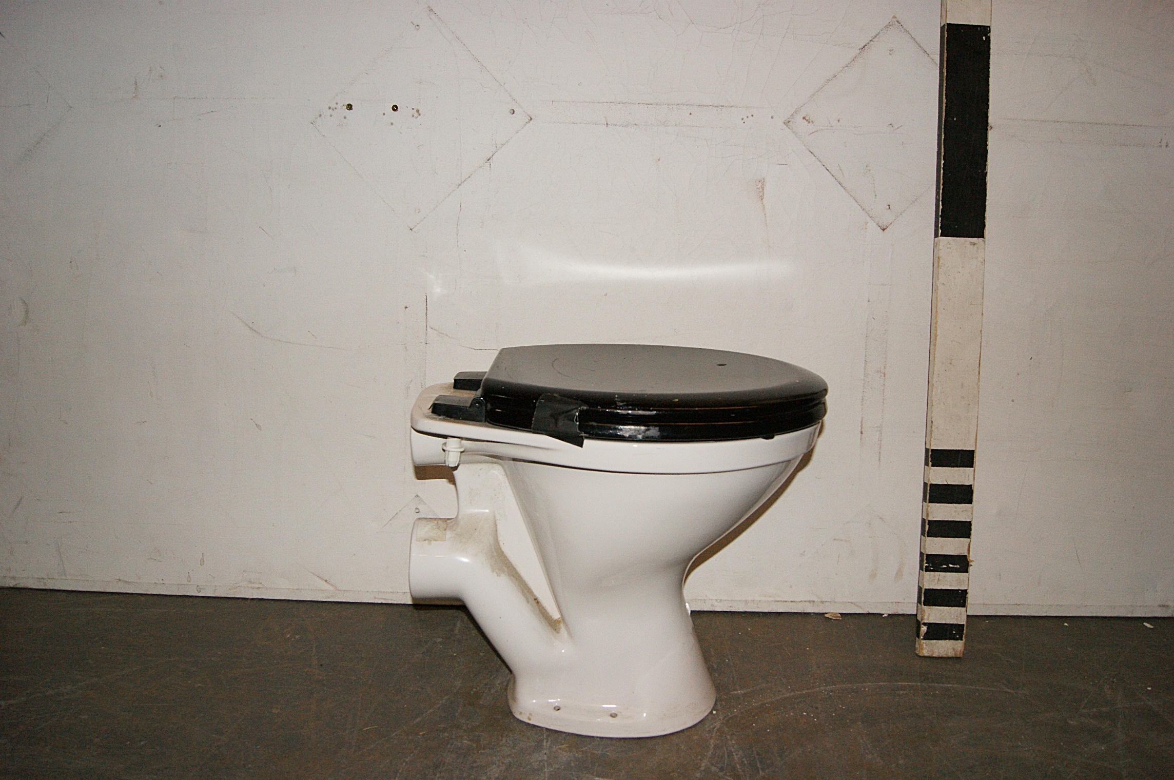 White Toilet With Black Seat. 0055042 White Toilet With Black Seat  H 45cm x 37 50 Toilets Archives Stockyard Prop and Backdrop Hire